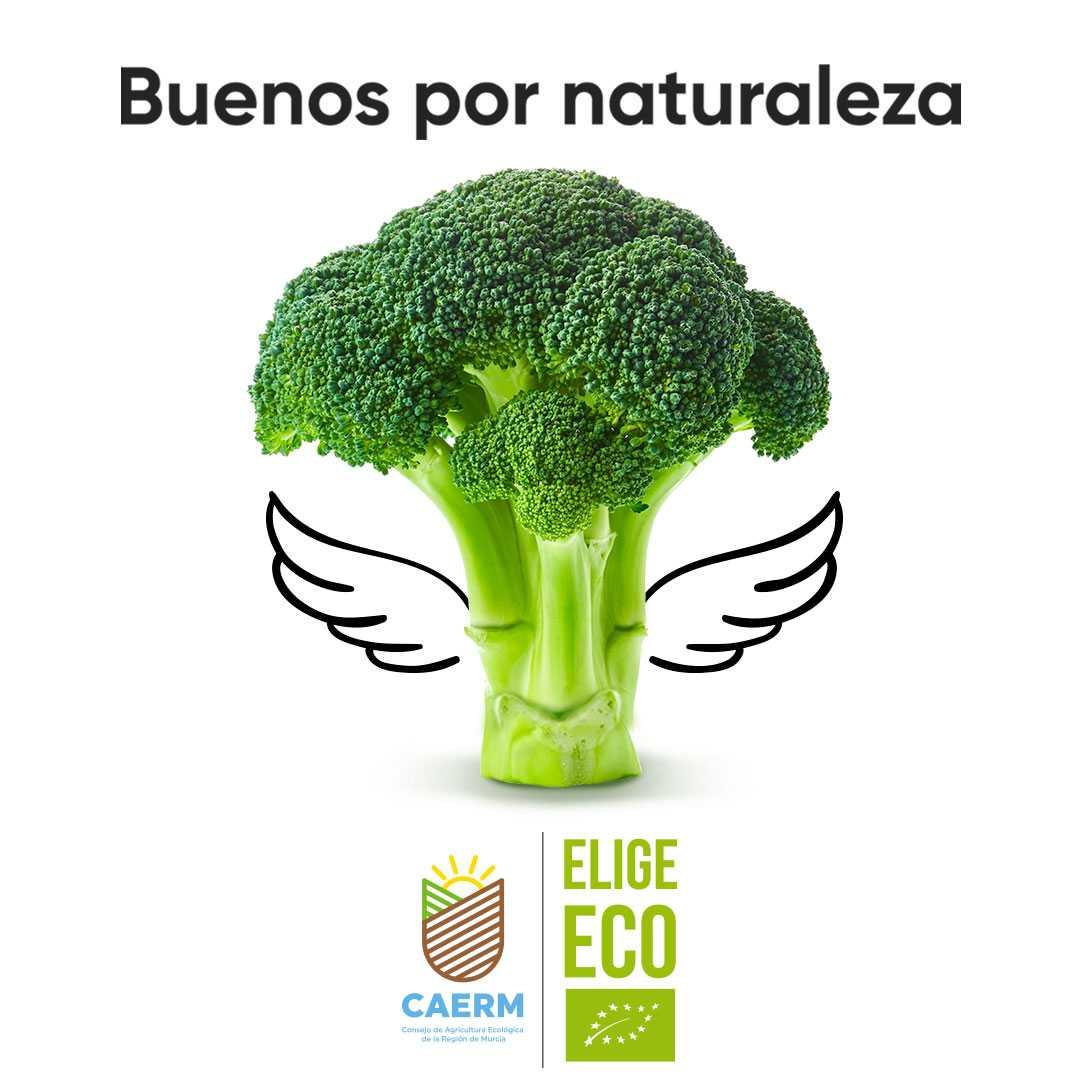Consejo de Agricultura Ecológica de la Región de Murcia<br>
